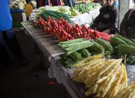 New approaches needed for agriculture