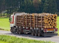 Logging suspended after early inquiry reports
