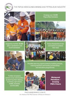 PNG Annual Industry Overview 2020 – 39