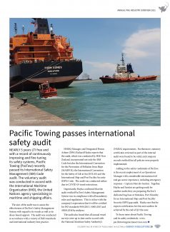 PNG Annual Industry Overview 2021 – Page 41